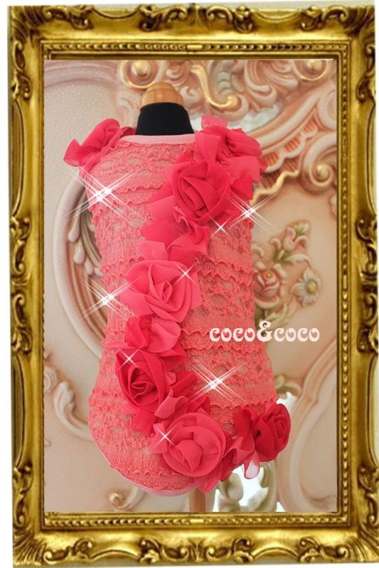 画像1: 【新作】ストレッチピンクレース Roseドレス セレーナちゃんモデル